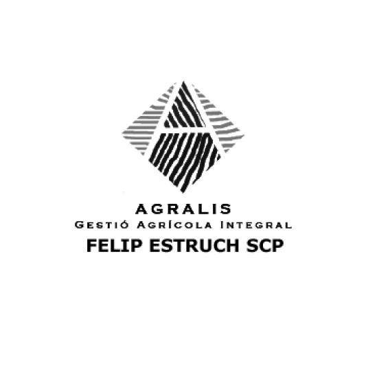 logos-nits15-felip-estruch