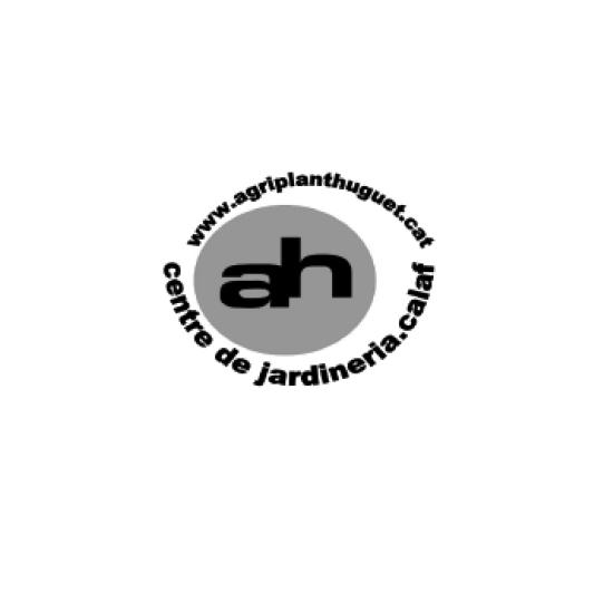 logos-nits23-ah