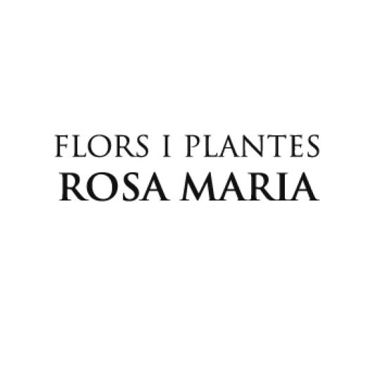 logos-nits27-flors-plantes-rosa-maria